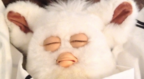 Help! My Furby wont wake up!